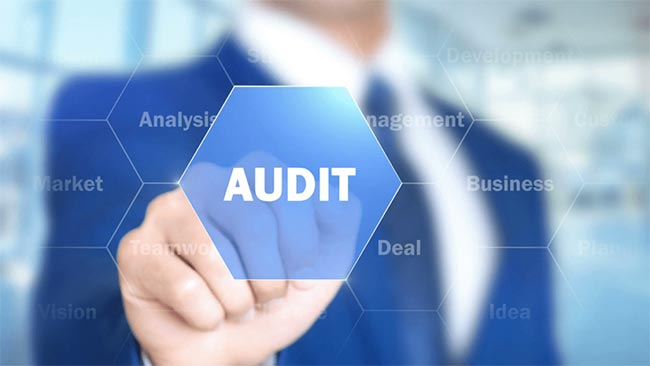 The Importance of an SEO Audit for Your Business Website